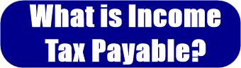 Income Tax Payable