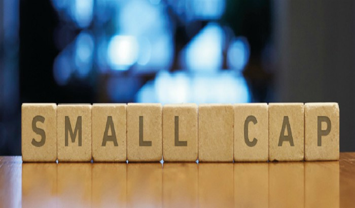 Small Cap Mutual Funds