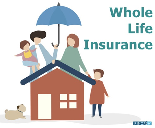 Whole Life Insurance Whole Life Policy Whole Life Insurance Plans